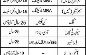 Staff Required at Gujrat 2020