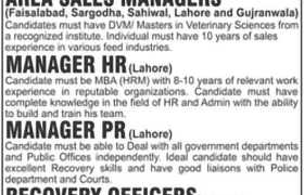 Ghani Group Jobs 2020