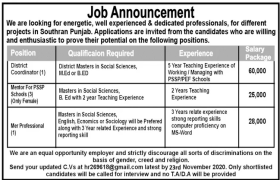 South Punjab Project-Based Jobs 2020