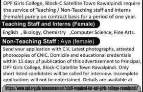 OPF Girls College Internships 2020