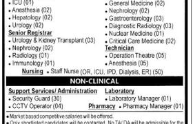 PKLI&RC Jobs 2021