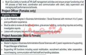 Management & HR Consulting Jobs 2021