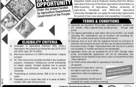 Agriculture Department Punjab Internships 2021