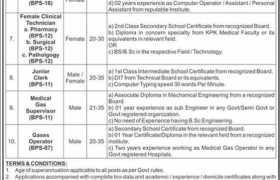 Burns & Trauma Center Peshawar Jobs 2021