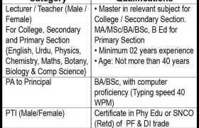 Jobs in Fazaia Inter College Korangi Creek 2021