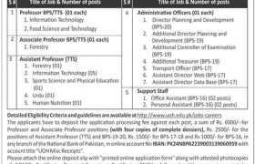 The University of Haripur Jobs 2021