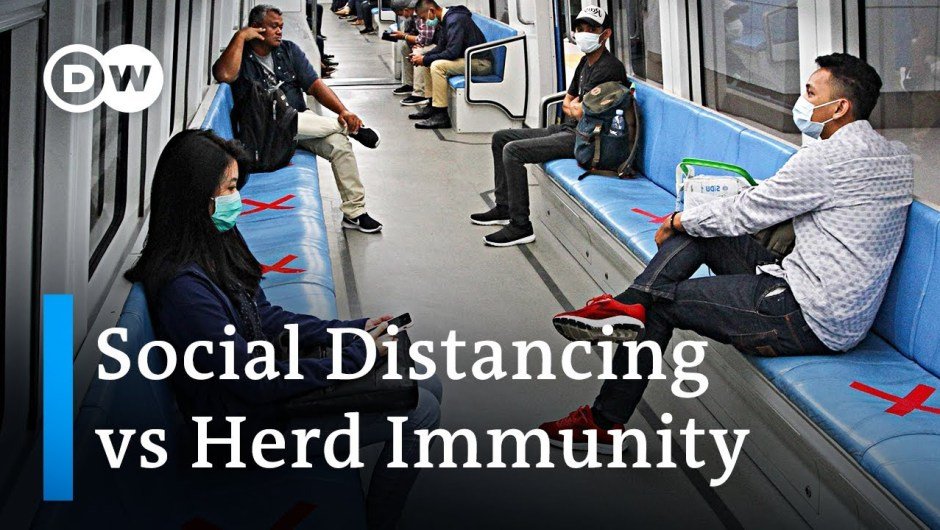 Can controlled 'herd immunity' be an alternative to social distancing? | Coronavirus Analysis