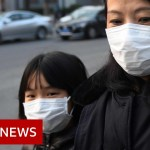 World battles coronavirus outbreak – BBC Information