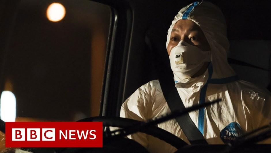 Coronavirus: People from quarantined cruise ship flown from Japan – BBC Information