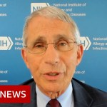 Trump-touted Covid-19 drug ineffective says Fauci – BBC Information