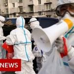 Beijing again in lockdown as metropolis faces new surge of coronavirus instances – BBC Information