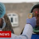 Yemen bracing for coronavirus outbreak – BBC Information