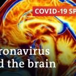 Can the coronavirus trigger everlasting mind injury? | COVID-19 Particular