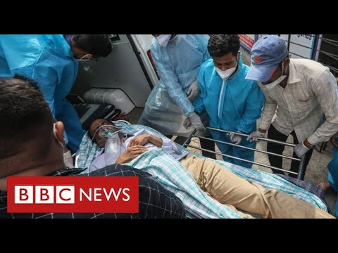 India's Covid frontline: one hospital's determined battle to avoid wasting lives – BBC Information
