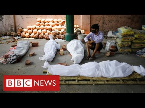 India's Covid disaster deepens with greater than 200,000 deaths confirmed – BBC Information