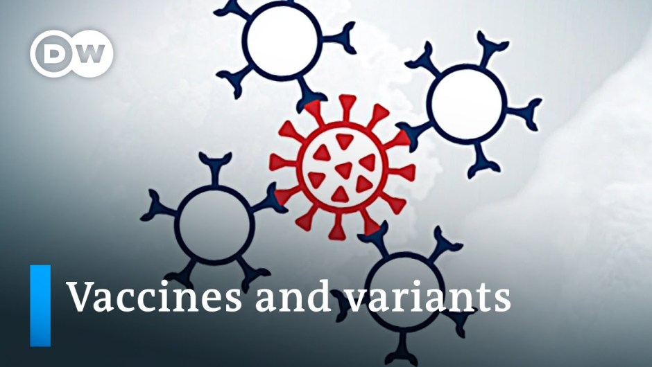 Vaccine efficacy unsure as coronavirus variants unfold   DW Information