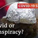 Conspiracy theories: Who're the individuals who imagine them?   COVID-19 Particular