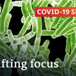 How the coronavirus shifts focus away from different lethal illnesses | Covid-19 Particular
