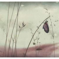 Le Bois Dormait de Rebecca Dautremer