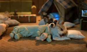 I am not finding an image of that and needed a break from Googling hellraiser jpgs so here is a corgi in pajamas.