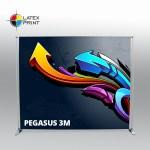 Pegasus_3m