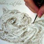"""Black Leopard - Work in Progress, ~5""""×7"""", sepia watercolor on board, ©Rebecca Latham"""
