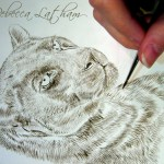 "Black Leopard - Work in Progress, ~5""×7"", sepia watercolor on board, ©Rebecca Latham"