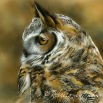 """Contemplation - Great Horned Owl, ~6""""x6"""", watercolor on board, ©Rebecca Latham"""