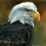"Strength - American Bald Eagle, ~6""x6"", watercolor on board, ©Rebecca Latham"