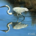 Evening Egret, 6in x 8in watercolor on board with sterling silver & 24kt gold