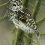 Lofty Perch, watercolor and sterling silver on board, ©Rebecca Latham - Mini Award Winner, 7th Annual Paint the Parks, Coutts Museum of Art