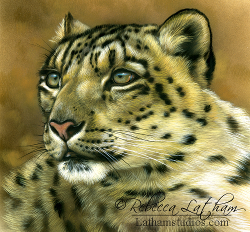 Leopard, 6in x 6in, opaque and transparent watercolor with sterling silver and 24kt gold on board, ©Rebecca Latham