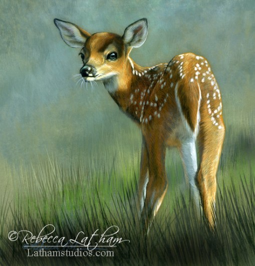 Look Behind You - Fawn,  Opaque & transparent watercolor with sterling silver on board, 6in x 6in, ©Rebecca Latham