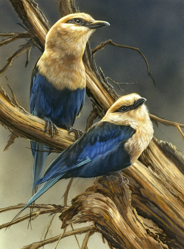 Realistic wildlife paintings from the artist