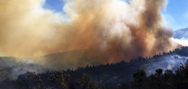 Laut den staatlichen Institutionen gab es in den letzten Tagen insgesamt 119 Waldbrände