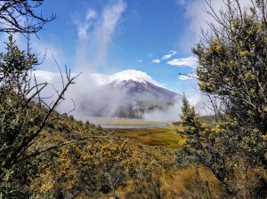 Cotopaxi from the Páramo trail
