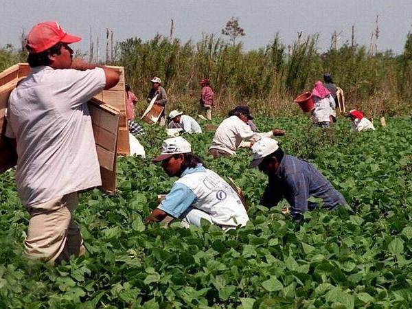 Ten Golden Rules for Mexican and Latin American Immigrant Survival from COVID-19 in the US