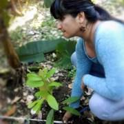 Decenia Vega Cacao Puerto Rico