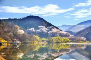 Teaching English Overseas….one Latina's adventure in Korea