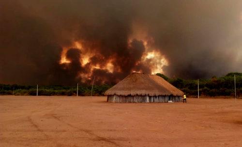 SACCHEGGIARE E STERMINARE: PERCHÉ BOLSONARO VUOLE LE MILIZIE IN AMAZZONIA