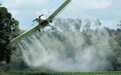ANLA aprueba Plan de Manejo Ambiental para regreso de la aspersión con glifosato.