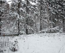 Septiembre nos da la bienvenida con una inesperada nevada
