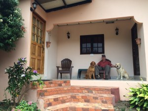 img_1207 A window on a new world Pets The Expat Life