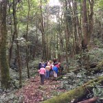 0171f9c1fc3eb05f927cdbdc334a9244adbf9b6826 Journey to the Clouds Hiking in Panama The Expat Life The Great Outdoors