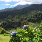img_0561 Holidays to Remember Hiking in Panama Panama The Expat Life The Great Outdoors
