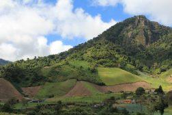img_6780-scaled Day Trippin' - Cerro Punta Panama The Expat Life