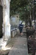 walkway_colon_cemetery_havana1 Havana has cemetery stories, too Cuba