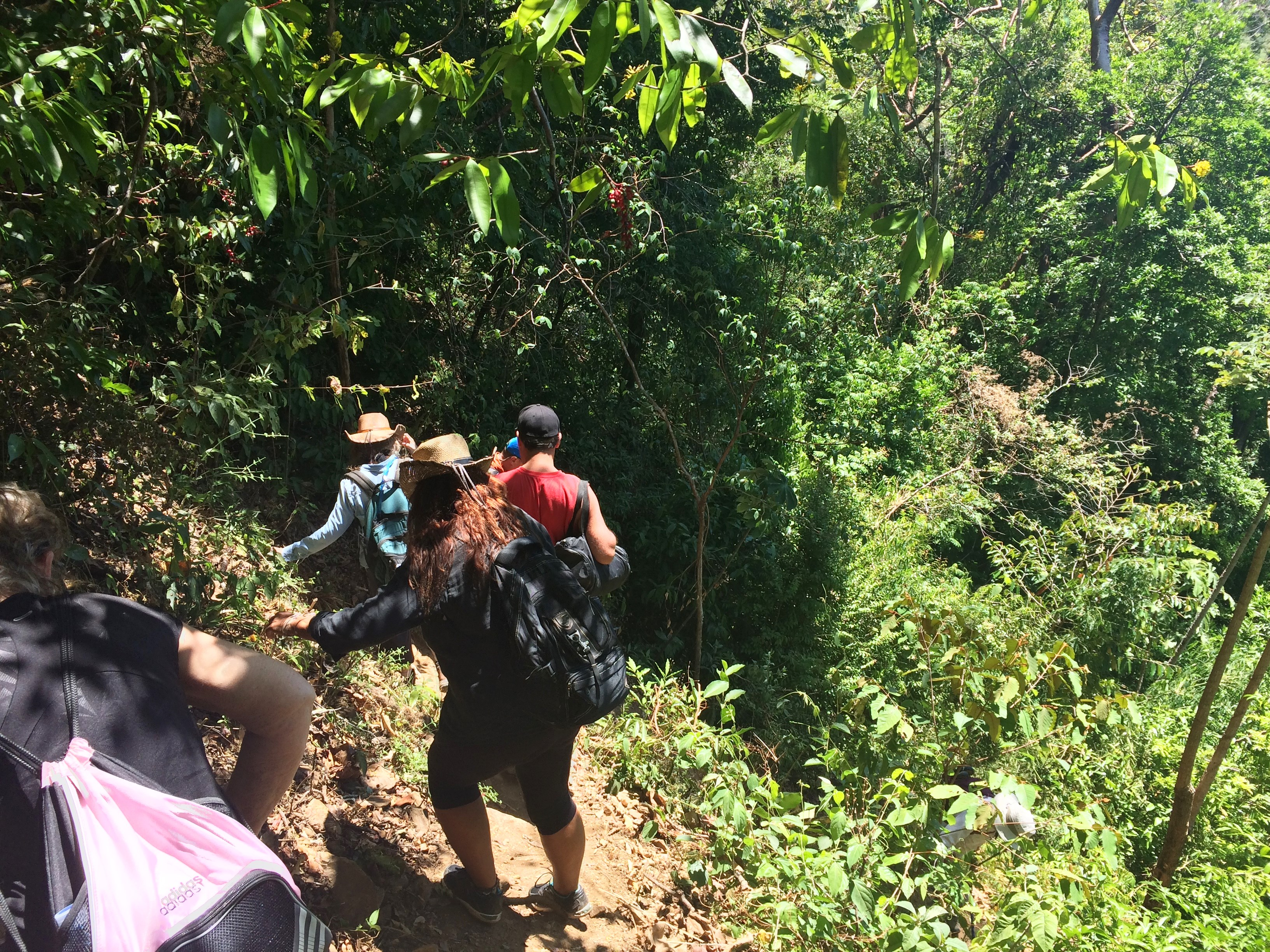 Climbing-down-to-Kiki-Falls The Waterfalls Just Keep Getting Better . . . Hiking in Panama Panama The Great Outdoors