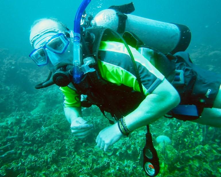 fullsizeoutput_10d1 Diving in Cartagena, Colombia Cartagena Colombia Diving