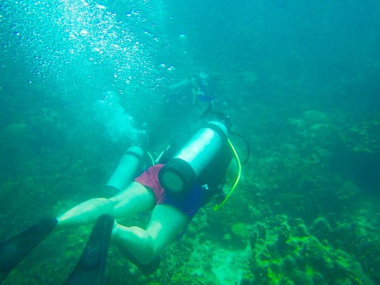 fullsizeoutput_10d8 Diving in Cartagena, Colombia Cartagena Colombia Diving